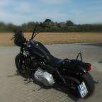 Harley black 3